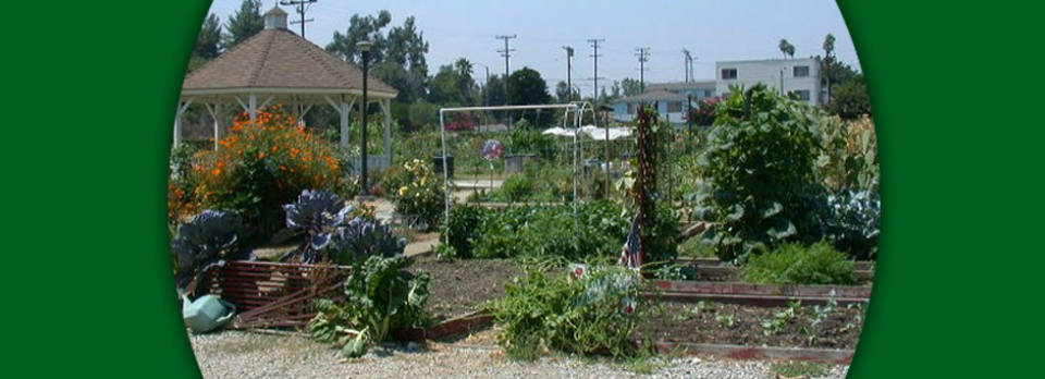 Botanical Gardens' and Other Organizations' Garden Events ... on community diy space, home space, community pool, community work space, garage space, community park space, cricut design space, art gallery space, living room space,